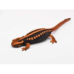 Крокодиловый тритон (Tylototriton shanjing) - 8-9см