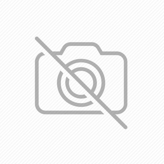 Фото Скалярия далматин(бело-черная) (Pteregophylum Scallare) - 4см Смотреть