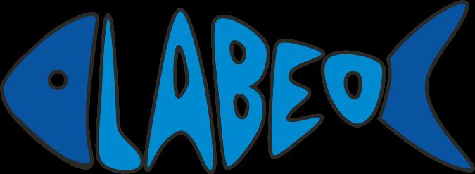 Labeo